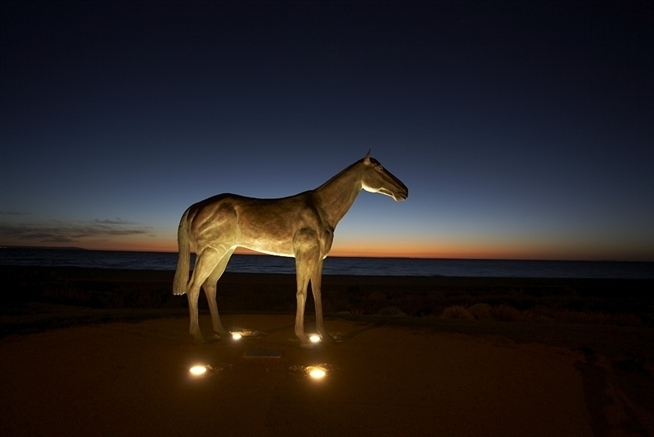 Horse at night (standard)